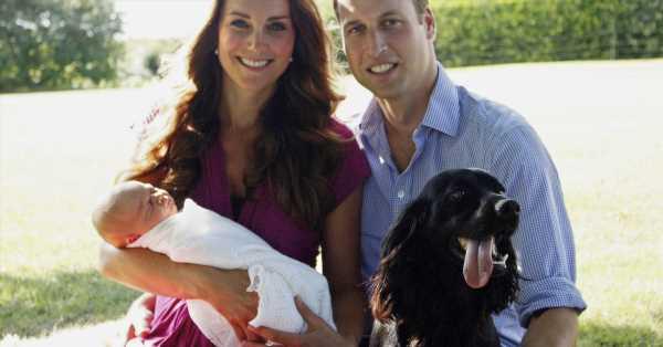 Kate, Guillermo y los niños superan la muerte de Lupo con un cachorro regalo de James Middleton