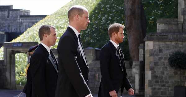 Al final, caminaron juntos: la charla de Guillermo y Harry tras un año de desencuentros