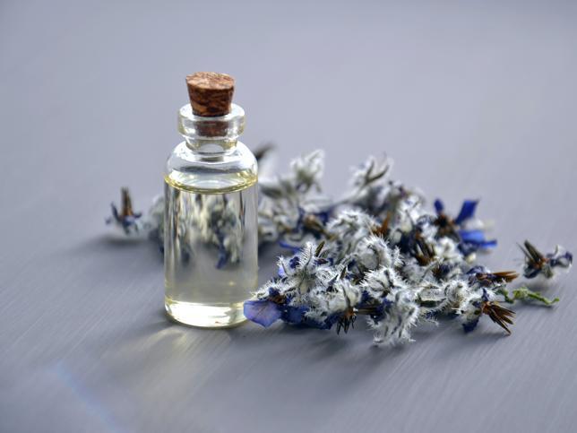 Aceite de árbol de té: el multiusos que vas a adorar por sus efectos antisépticos y desinfectantes