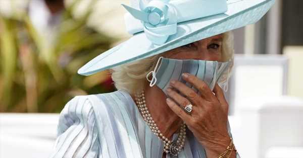 Los tocados vuelven a Ascot: Camilla de azul bebé, la princesa Ana elegante al máximo, Zara Tindall y su despliegue de volantes…