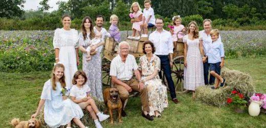 La familia real sueca celebra su reencuentro con un idílico posado en su residencia de verano